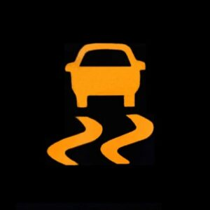 Traction Control Warning Index Example